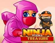 Ninja Vital Treasure